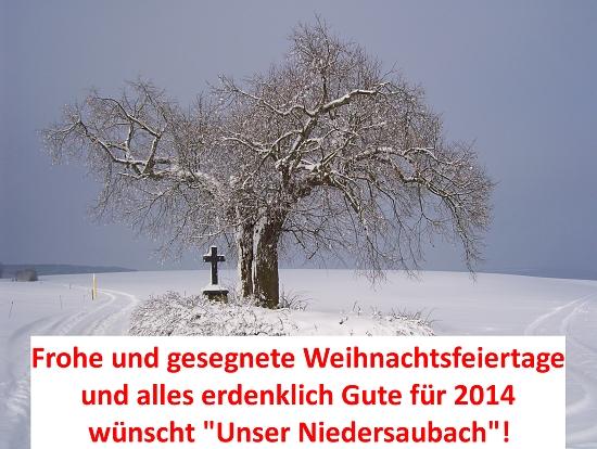 Alte Linde auf dem Weiherberg am Kirchenpfad zwischen Rümmelbach und Lebach, Fotos: Manfred Mai (Lacher)